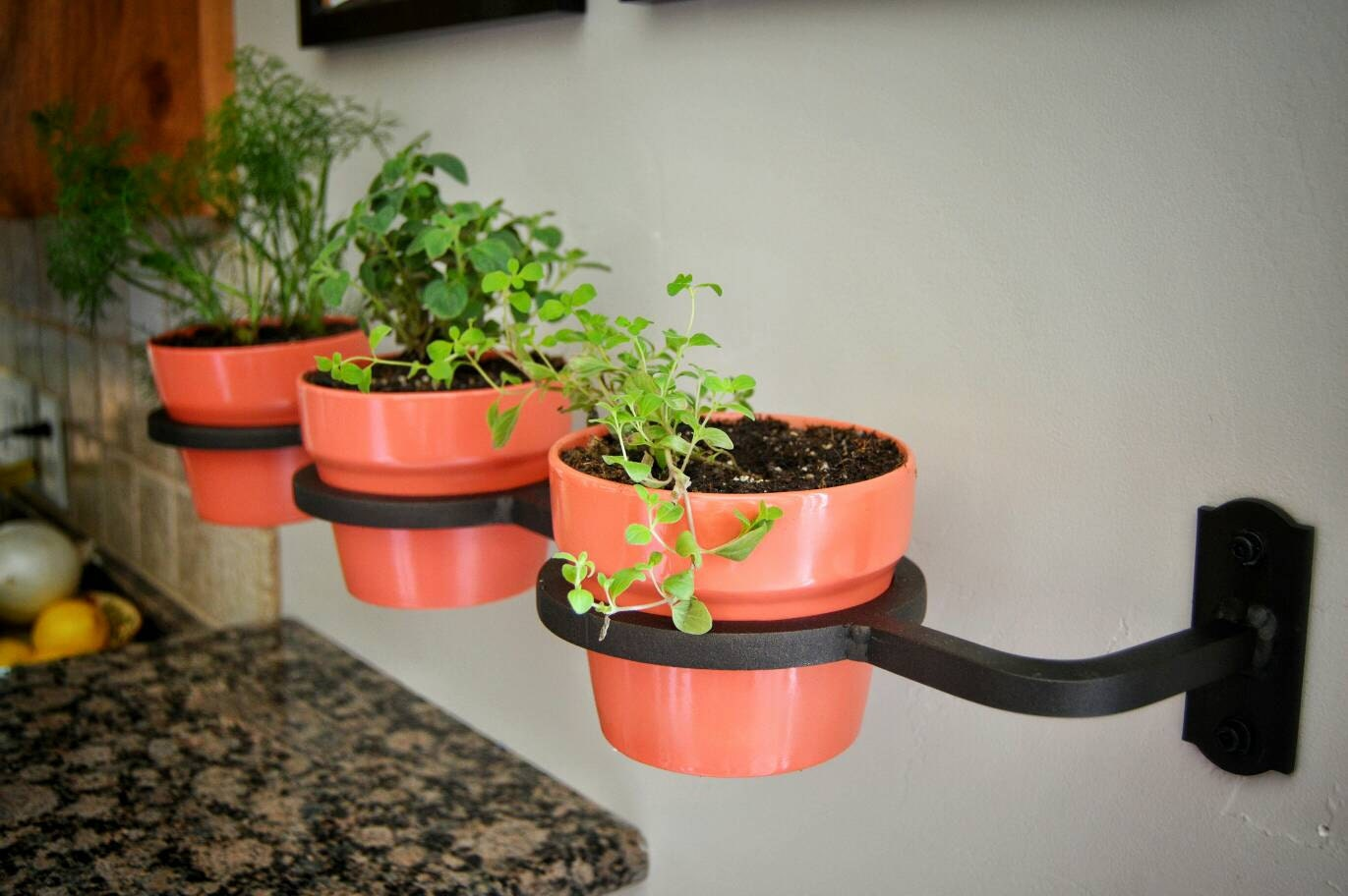 Indoor Outdoor Herb Garden Flower Pot Holder Planter Metal