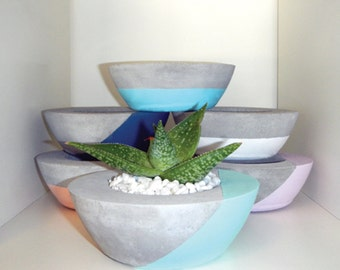 Medium Bowl Concrete Planter