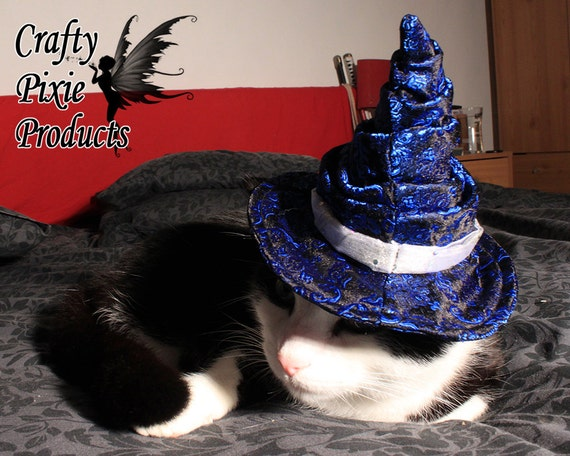 blue cat dog pointy wizard hat bespoke by