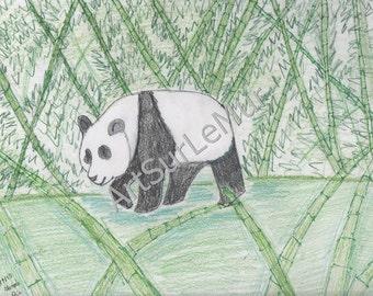 Panda Bear, 4x6 print of pencil drawing