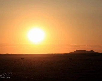 Sunset Photo