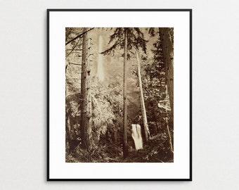 Multnomah Falls Print - Carleton Watkins - Oregon Landscape - Vintage Oregon - PNW - Pacific Northwest Art - Oregon Wall Art -  Home Decor