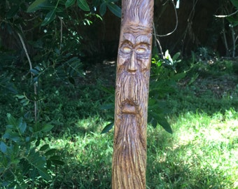 Hand carved cane / Walking stick