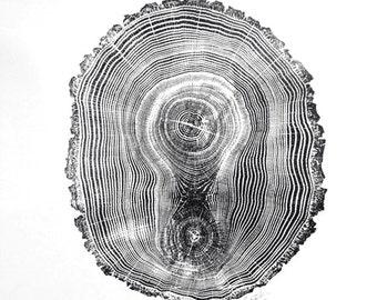 Oak Tree Ring Print