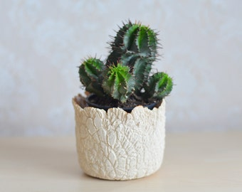 Handmade planter, ceramic planter, ceramic and pottery, unique, gift