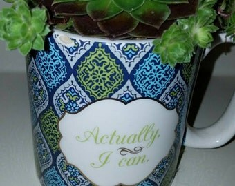 Inspirational Succulent Mug Decor