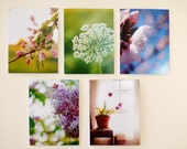 Flower Note Cards Set Of 10