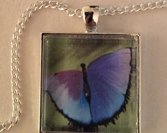 Butterfly necklace - 1 inch glass bezel pendant