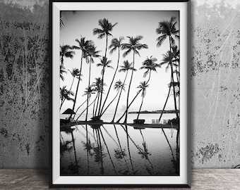 Black and White Photography, Palm Trees Print, Tropical Print, Ocean Print, Palm Print, Coastal Art, Beach Wall Art, B & W, Beach Print, 120