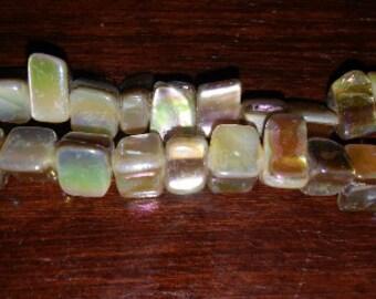 SALE! Shell beads metallic shell beads freeform shell beads 6x8mm shell beads