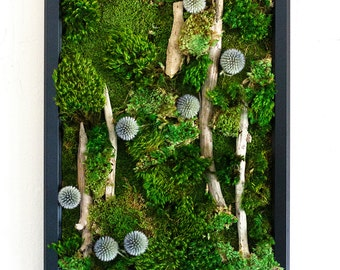 Merveilleux Moss Wall Art ~ Moss Art Work ~ REAL Preserved Moss ~ No Maintenance  Required Green