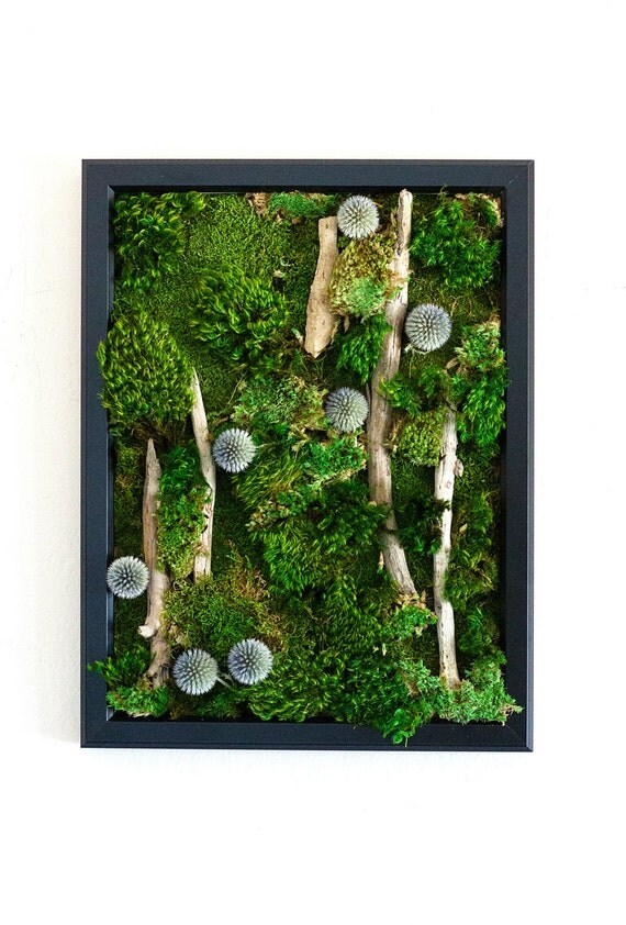 "Moss Wall Art ~ Moss Art Work ~ REAL Preserved Moss ~ No Maintenance Required ~ 13""x17"" ~ ""Azure"""