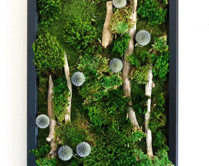 "Moss Wall Art ~ Moss Art Work ~ REAL Preserved Moss ~ No Maintenance Required Green Wall Art ~ 13""x17"" ~ ""Azure"""