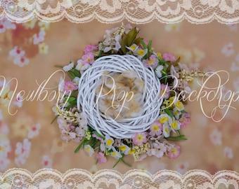 Newborn Digital Backdrop (white/nest/flower/pink/orange)