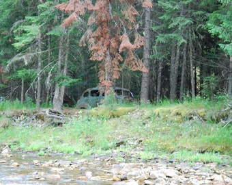 digital download, old car, woods, forest, old car by the creek, old car in the woods