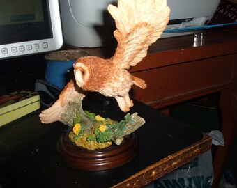 vintage country artists tawny owl in fight 1999