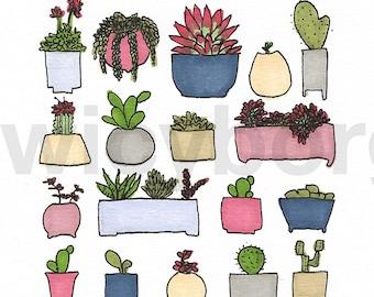 Succulents in flowerpots no 2 - Original promarker illustration