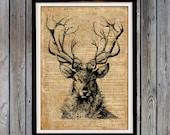 Deer head wall art Stag print Rustic home decor Animal art SH70