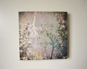 SALE, Spring Dream, Beautiful Trees, Lilac and Blue, Fine Art Photography, 8x8, Photo Art on Wood