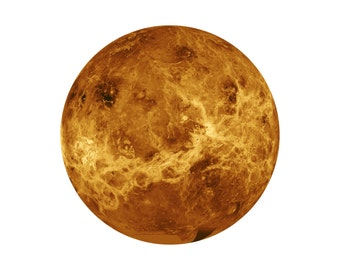 "The Planet Venus - Wall Decal - Size 12.25"" wide"