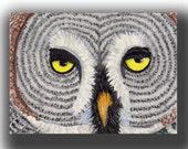 ACEO watercolor big grey OWL original painting SFA miniature bird art