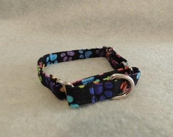 """XX Small Dog Martingale Collar 1/2"""" Wide 10-13"""" Paws"""