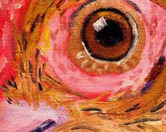 Rooster Eye, Small Original, Oil Painting, 4x5 Canvas, Animal, Chicken, Farm Animal, Closeup, Red, Brown, Gold, Feathers, Bird,