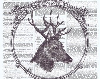 Deer,Woodland animal.Pretty Picture.Antique Book Page Print, gift.home decor,vintage,retro.french.art.birthday.nursery.forest.art.woods.mom