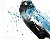 Crow no.2 ORIGINAL bird watercolour painting