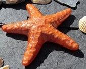 Fused Glass Persimmon Orange Starfish Kiln Cast Ornament Paperweight