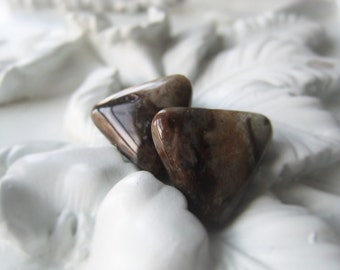 Gemstone Triangle Pair Jasper Tooth Item No. 6121