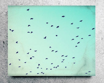 Birds flying, canvas art, nature photography, flock of black birds, aqua print, teal canvas wall art, turquoise sky  'As the Crows Fly'