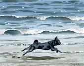 "Black Pug Art Print ""Black Pug at the Beach"" Signed by Artist DJ Rogers"