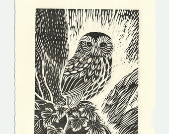 Owl in the Ivy original lino print