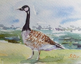 original watercolor painting ACEO canada goose 2.5x3.5 inches