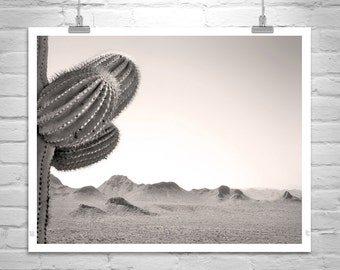 Desert Photograph, Tucson Arizona Art, Cactus Art, Nature Photography, Sonoran Desert, Desert Landscape, Western Picture, Sepia Photo, Cacti