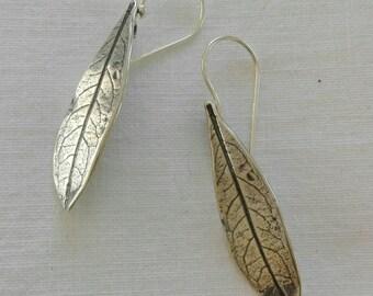 Pendientes hojas olivo medianas