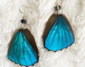 Real Blue Morpho Earrings - cruelty free