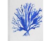 Sea Coral Art Canvas