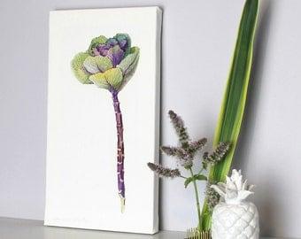 Canvas art-Ornamental cabbage print-flower illustration-botanical print-gift for gardener- gift for mothers-gift for wife-floral box print