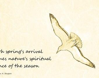 haiku poems about spring - photo #26