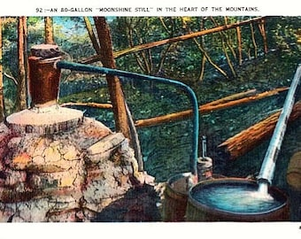 Vintage Postcard - A Moonshine Still in the Mountains (Unused)