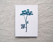 Cow Parsley botanical print in metallic teal foil leaf botany shiny limited edition 'Botanique Electrique' collection