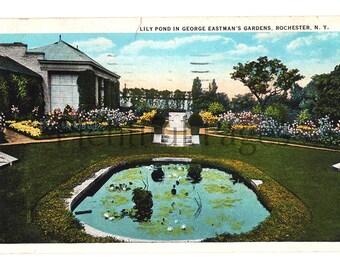 1927 Rochester, New York Vintage Postcard, George Eastman's Gardens, Lily Pond, Collectible Postcard, Vintage Souvenir, Antique Postcard.