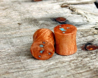 "11mm Maple Burl wood withTurquoise stone inlay, Amazing set of flesh plugs in 7/16ths"" gauge"