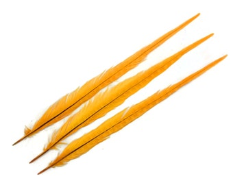 """Wholesale Feathers, 10 Pieces - 20-22"""" Gold Bleached and Dyed Long Ringneck Pheasant Tail Feathers : 4135"""