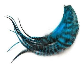 1 Dozen - MEDIUM TURQUOISE BLUE Grizzly Rooster Hair Extension Feathers : 620