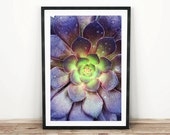 PRINTABLE wall art. Succulent 8x10 and 11x14. botanical, floral, green, room decor, modern