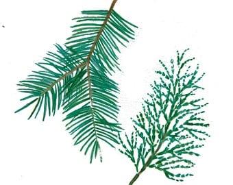 minimalist watercolor print: Pines