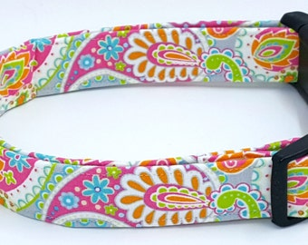 Such a Chic Girl Paisley Orange Green Grey Blue Pink Gray Dog Collar